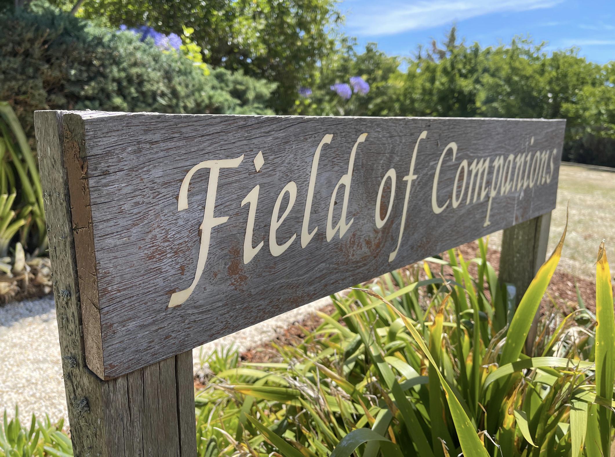 Field of Companions